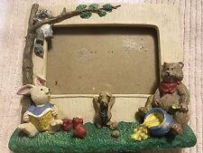Teddy Bear Honey Raccoon Wildlife Squirrel Trees Forest Rabbit Book Frame #D25