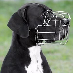 Wire Dog Muzzle Great Dane Metal Basket Leather Adjustable Large