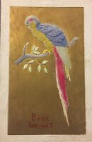 Postcard, Velvet Parrot Bird Best Wishes Gold Fuzzy Made In Germany Vintage P57