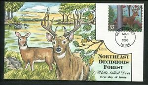 2005 New York Northeast Deciduous Forest White-Tailed Dear Collins FDC
