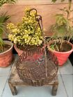 1800's Antique Iron Hand Crfated Early Indian Hanging Vegetable Basket