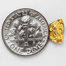 0.9960 Gram Alaska Natural Gold Nugget - (#53295) - FREE SHIPPING - Alaskan Gold
