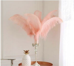 Peach Blush Pink 12 Pieces Ostrich Feather 12-14 inches Dozen Wedding Centerpiec