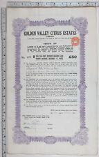 1924 Antique Share Certificat Doré Valley Agrumes Estates Limited