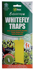Vitax Hanging Trap Protects against Whitefly Greenfly Blackfly