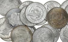 Estate Lot Us Morgan Silver Dollars Coins 1 Bu Mint Ms Unc O, S, P, Cc Mint