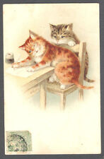 Cats, Cats Writing a Letter, Cute Old Postcard Pre. 1905