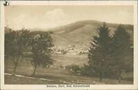 Ansichtskarte Bernau Dorf Schwarzwald 1929  (Nr.935)