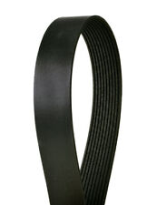 Serpentine Belt-Multi-V Continental Elite 4100640