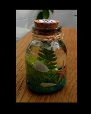 Tropical Florida Sand Beach Ocean Aquarium Sea Shells Seascapes In A Bottle #58