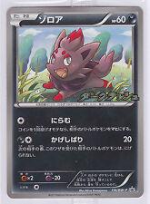 Pokemon Card Bw Dark Rush Campaign Pack Promo Zorua 116/Bw-P Japanese