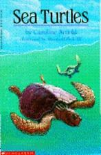 Sea Turtles by Arnold, Caroline