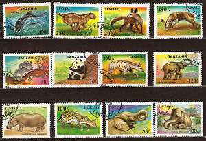 Tanzania Animals Wild: Hippos, Elephants, Servals, Panthere, Various E57