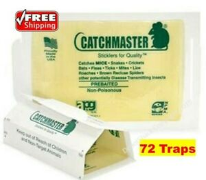 72 Pack Catchmaster Peanut Butter Glue Board Mouse Mice Spider Snake Insect Trap