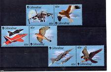 Gibraltar Aviones y Aves rapaces año 2001 (BI-825)