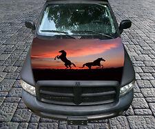 H108 HORSE HORSES Hood Wrap Wraps Decal Sticker Tint Vinyl Image Graphic