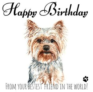 PERSONALISED BIRTHDAY CARD FROM THE DOG - YORKIE PET LOVER BEST FRIEND 6X6