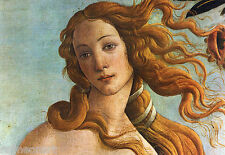 The Birth Of Venus Detail by Sandro Botticelli Giclee Fine Art Canvas Print