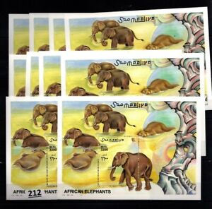 # 10X SOMALIA 2000 - MNH - ELEPHANTS - ANIMALS