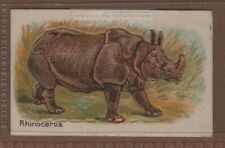 African Rhinoceros with Pop-Up Image 1920s Trade Ad Card