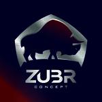 ZUBR-Concept