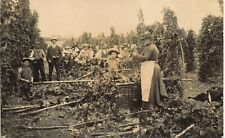More details for odiham posted hop pickers. woman & basket. from a.f.saunders to miss tatham.