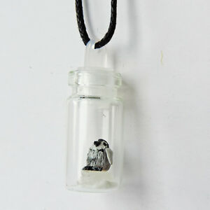 Tiny miniature baby penguin totem animal in a glass jar necklace pendant