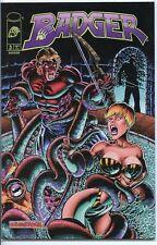 Badger 1997 series # 5 near mint comic book
