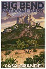Casa Grande, Big Bend National Park Texas, Tree Cactus Bird TX - Modern Postcard