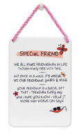 Special Friend Inspired Words Tin Hanging Plaque Sentimental Gift Range