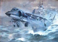 AVIATION ARTIST Michael Turner Print 'SEA HARRIER'. Free UK Post