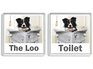 BORDER COLLIE READING A NEWSPAPER ON THE LOO Novelty Toilet Door Signs