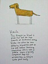 """Hungarian Vizsla Dog Mounted Print 9x7"""" Art Picture Cartoon Humour"""
