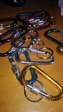 Un moschettone dritto bloccaggio 6 cms alluminio colori, portachiavi chiavi