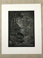 The Woodland Stag La Fontaine Fables Story Genuine Antique Print