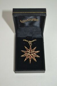 Vintage 9ct Yellow Gold Hallmarked Pendant with Garnets Star Setting incl. Chain