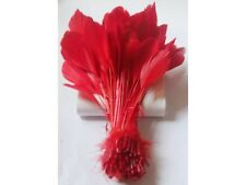 10 6-8 inch Red coque style goose feathers