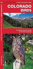 A Pocket Naturalist Guide: Colorado Birds : A Folding Pocket Guide to Familiar..