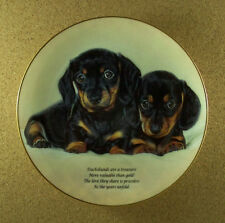 Cherished Dachshunds Love They Share Plate Dog Puppies Danbury Mint Charming!