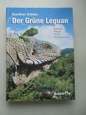 Der Grüne Leguan Biologie Pflege Zucht Erkrankungen 1998