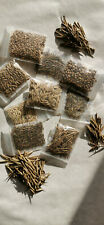 10 different varieity Bamboo seed mix - Rare Collection  - Moso,  Dendrocalamus,