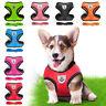 Nylon Pet Small Medium Dogs Puppy Lead Leash Reflective Mesh Vest Harness Cute