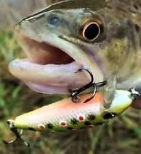 2 Awesome 5 cm Trout Lures Flathead Bass Redfin Perch Trout Cod Bream Salmon Eel
