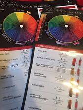 Schwarzkopf Royal Color Systems Wall   Chart