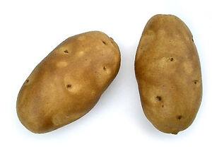 Artificial Brown Baking Potato Decorative Fake Vegetable Spud Bag of 6 Idaho