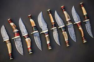 "Lot of 10 Custom Handmade Damascus Steel 10"" Skinner Hunting Knife| Stag Handle"