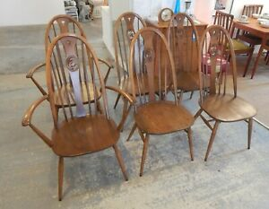 Vintage Ercol Set of 6 Swan Back Golden Dawn Chairs - 2 Carvers & 4 Chairs