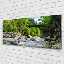 Bilder Leinwand-Bilder 100x50 Wandbild Canvas Kunstdruck See Steine Wald Landschaft