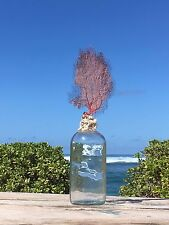 Handmade bottle toppers of Coral, Sea fans, Shells & Starfish from Hawaii