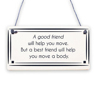 Best Friend Sign Friendship Gift Funny Thank You Novelty Birthday Chic Plaque